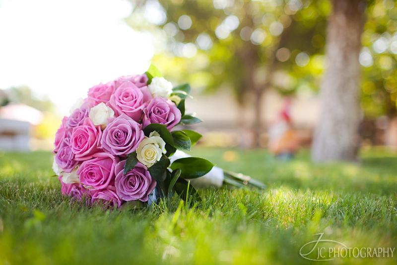006 Fotografii nunta Andreea & Ovidiu