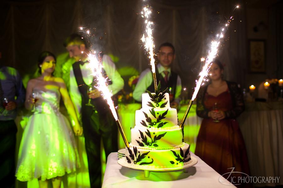 73 Fotografii de nunta Lavinia & Horatiu