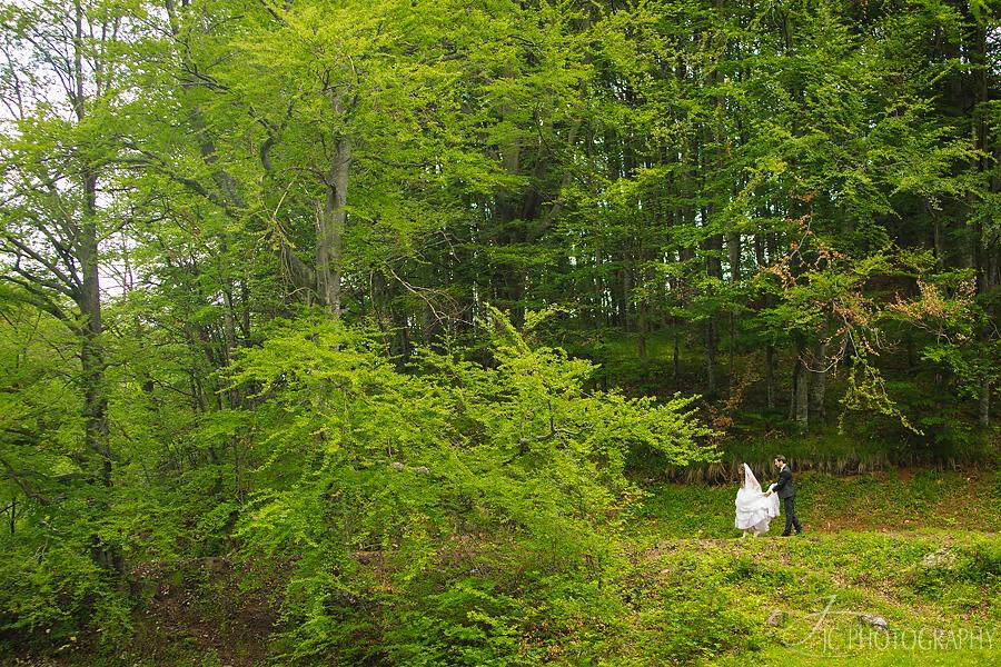24 Fotograf profesionist nunta