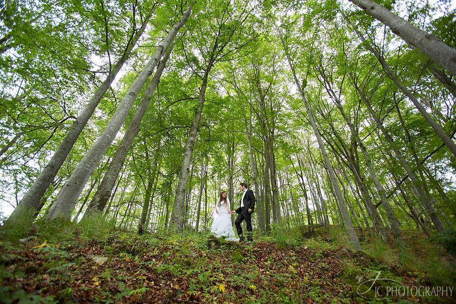 37 Fotograf nunta Timisoara