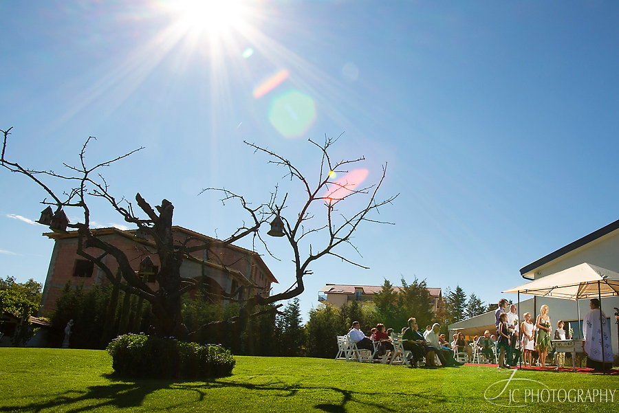 02 Fotografii de nunta in Cluj Da Vinci