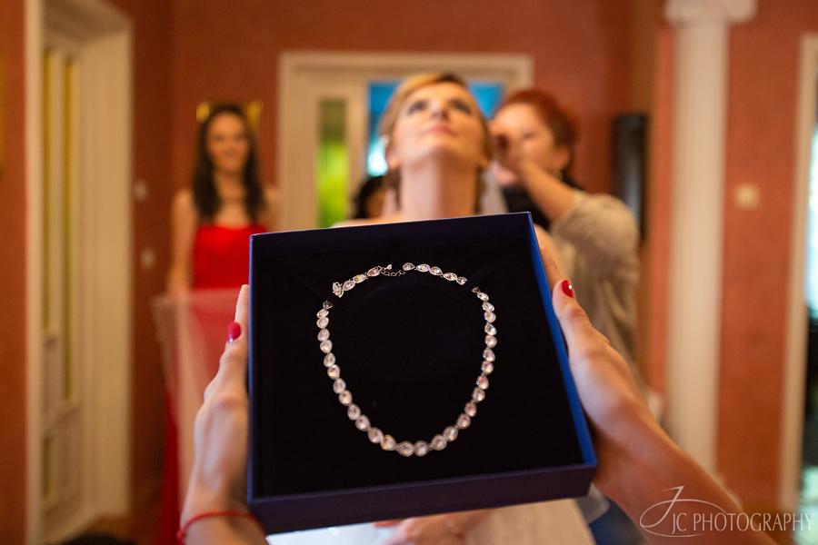 27 Fotografii de nunta in Satu Mare