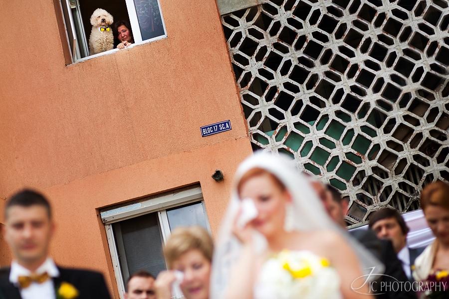 14 Fotografii de nunta in Alba Iulia