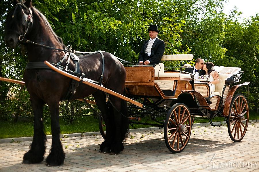 36a caleasca nunta Royal Horse Bucuresti