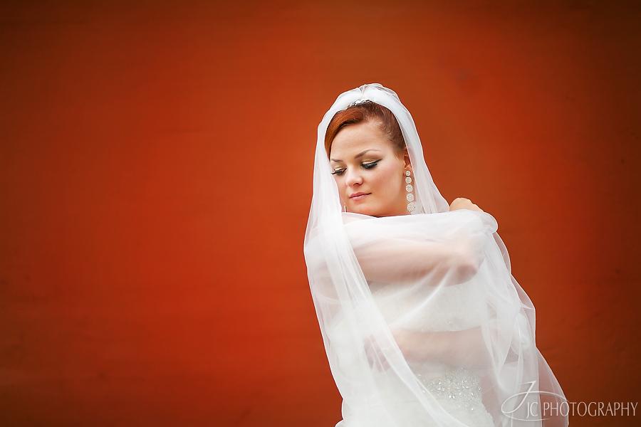 17 Fotografii nunta Viena