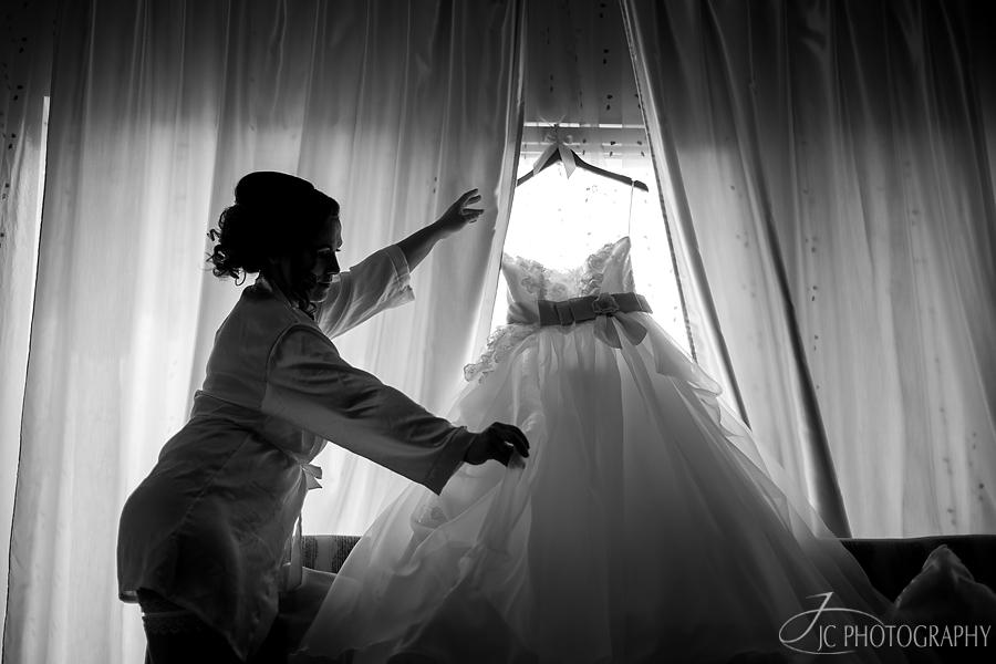 10 Fotografii nunta Vila Elisabeta Alba Iulia