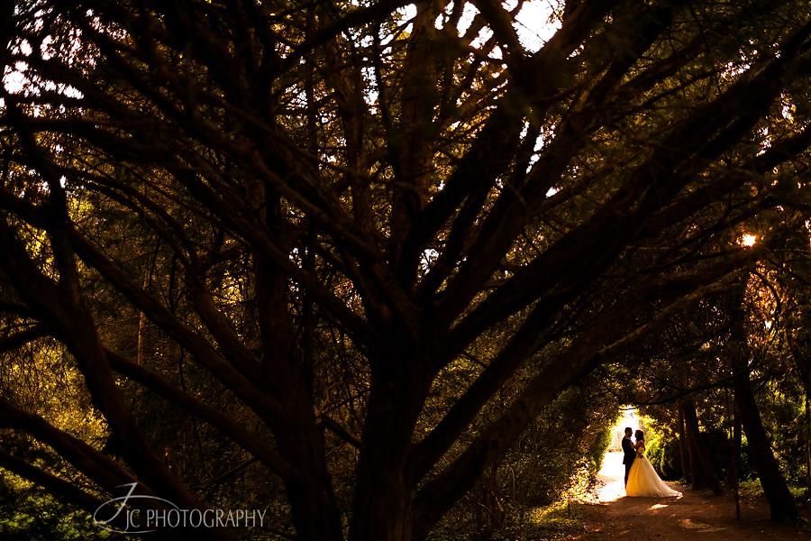 18 Sedinta foto dupa nunta