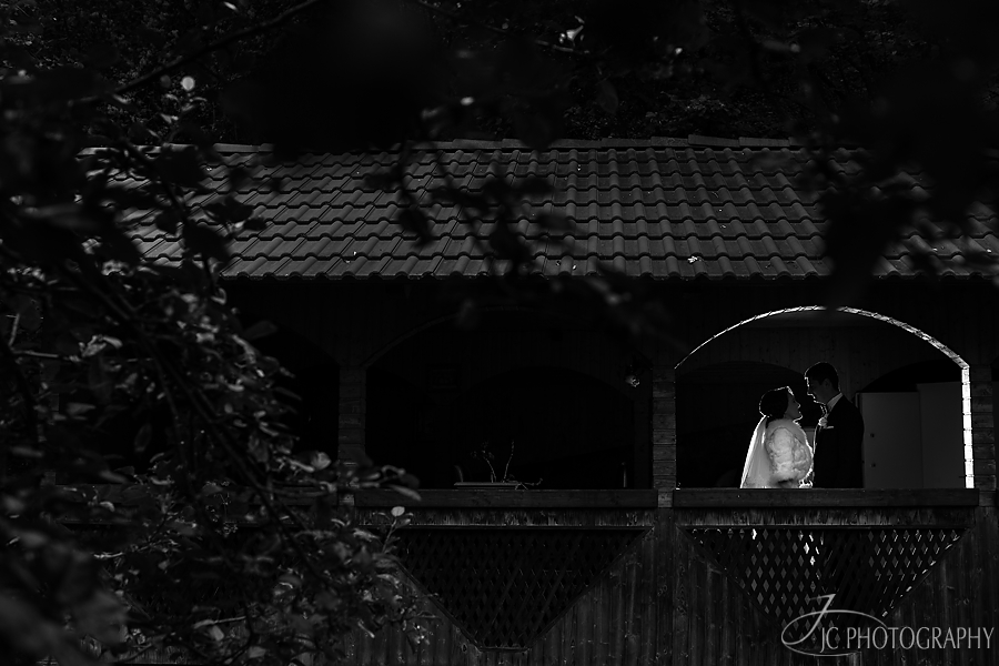 14 Fotografii sesiune foto nunta Sugag