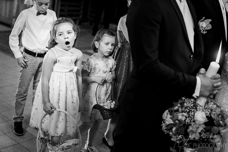 19 Fotografii nunta Orastie