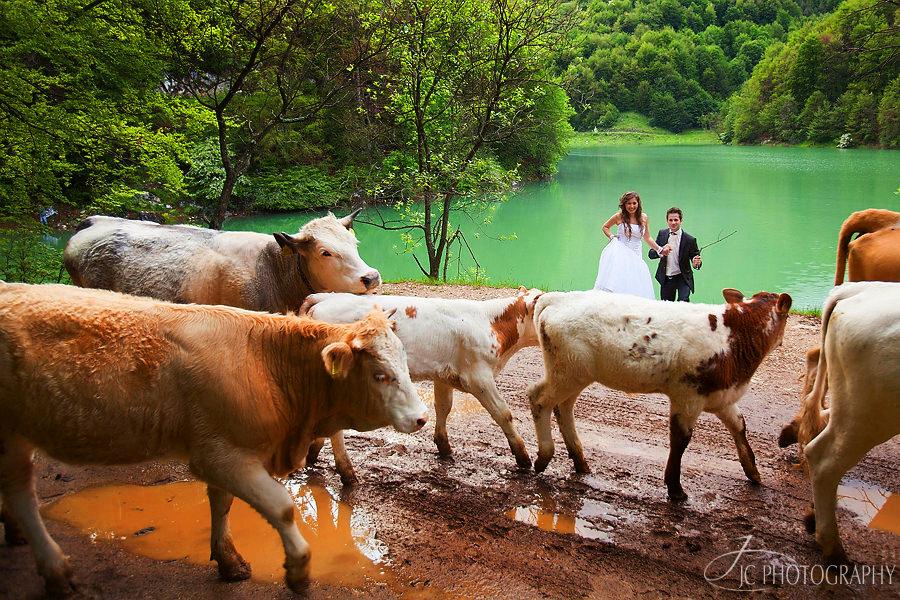 59 Sesiune foto dupa nunta