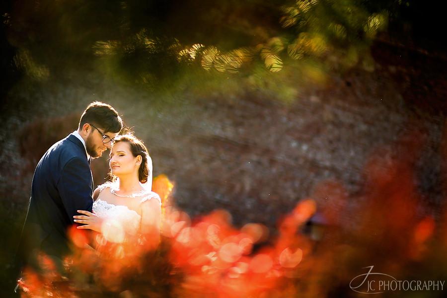 Fotograf nunta Alba