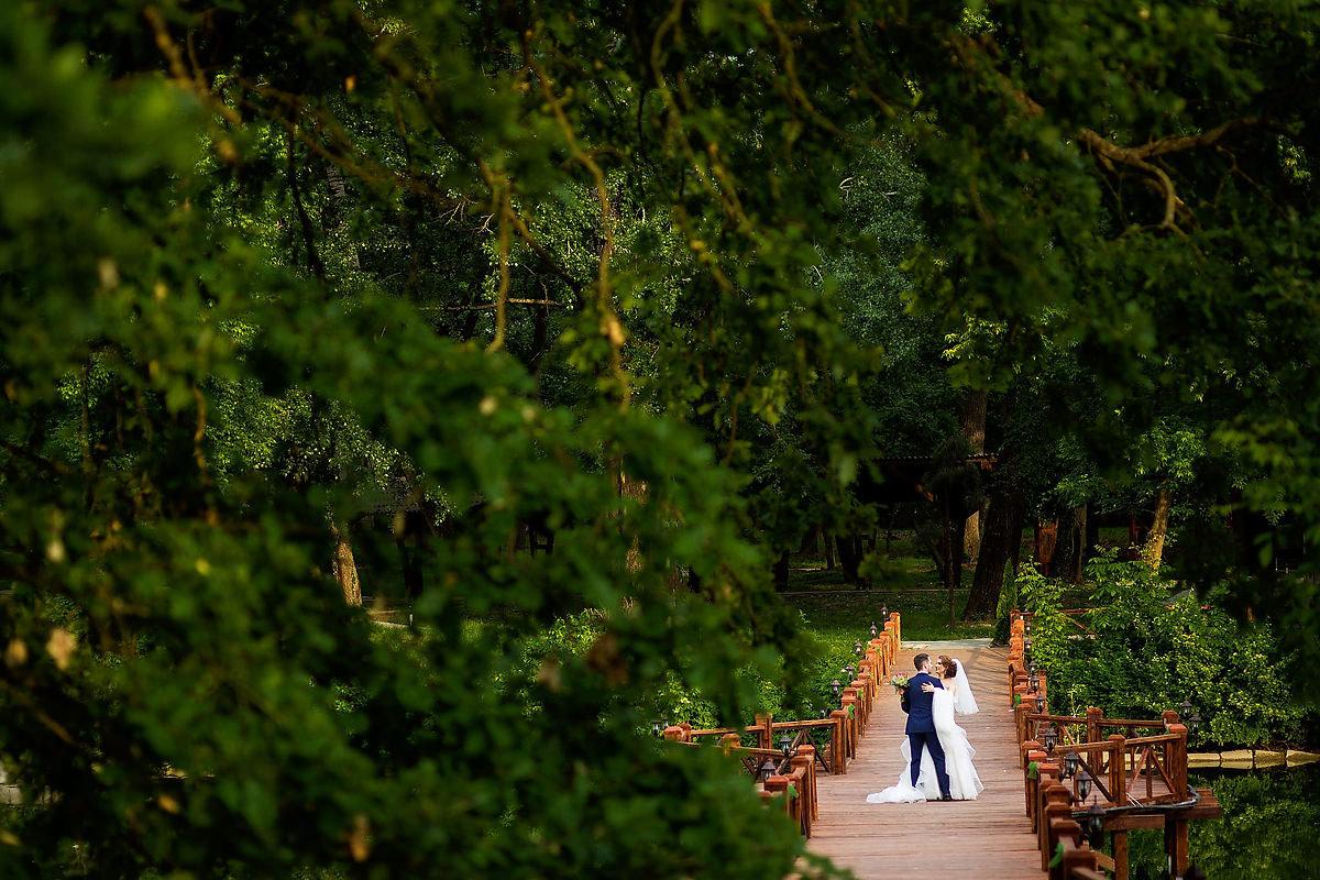 44 Fotografii nunta Stirbey